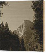 Yosemite Park Sepia Wood Print
