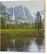 Yosemite Rain Wood Print
