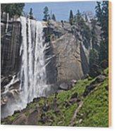 Yosemite's Mist Falls Wood Print