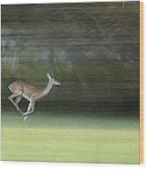 You Better Run Through The Jungle Wood Print by Hazel Billingsley