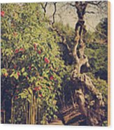 You'll Never Be Alone Wood Print by Laurie Search