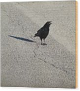 Young Cawing Crow Wood Print