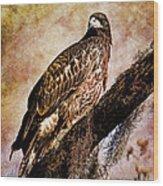 Young Eagle Pose II Wood Print