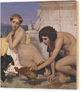 Young Greeks Attending A Cock Fight Wood Print