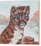Young Mountain Lion Wood Print
