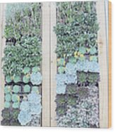 Your Garden Wall Wood Print