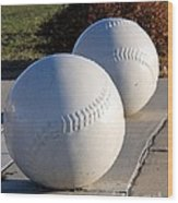 Youth Baseball Park Wood Print