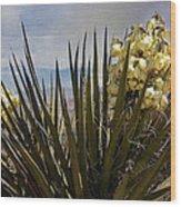 Yucca Blooms Wood Print