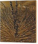 Yucca Gold Wood Print