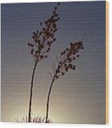 Yucca Sillhouette Wood Print