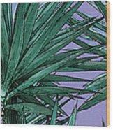 Yucca Tops Wood Print