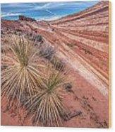 Yucca Valley Wood Print