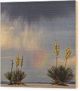 Yuccas, Rainbow And Virga Wood Print