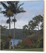 Yungaburra Lake View Wood Print