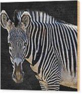 Z Is For Zebra Wood Print