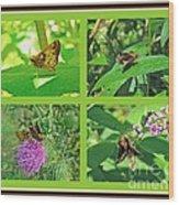 Zabulon Skipper Butterfly - Poanes Zabulon Wood Print