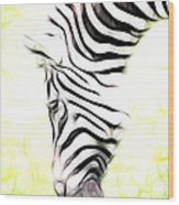 Zebra Art Wood Print