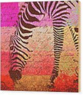 Zebra Art - T1cv2blinb Wood Print