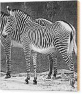 Zebra Black And White Wood Print