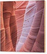 Zebra Canyon Wood Print by Johnny Adolphson