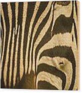 Zebra Eye Wood Print by Jennifer Burley