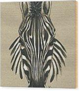 Zebra Front Wood Print