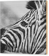 Zebra Head Profile Wood Print