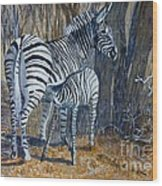 Zebra Mother And Foal Wood Print