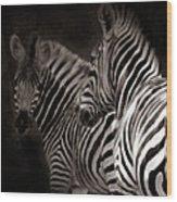 Zebra Night Wood Print