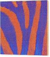 Zebra of a Different Stripe Wood Print