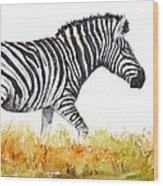 Zebra Panoramic Wood Print