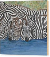 Zebra Pool Wood Print