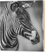 Zebra Profile In Black And White Wood Print