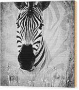 Zebra Profile In Bw Wood Print