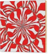 Zebra Red Swirling Kaleidoscope  Wood Print