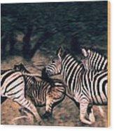 Zebra Stampede Wood Print