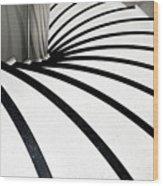 Zebra Steps Wood Print