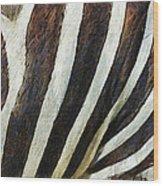 Zebra Texture Wood Print by Ayse Deniz