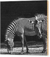 Zebra Unique Patterns Wood Print
