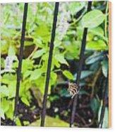 Zebra V Wood Print