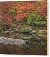 Zen Foliage Colors Wood Print