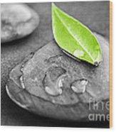 Zen Stones Wood Print by Elena Elisseeva