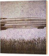 Zeppelin  Wood Print by Bob Orsillo