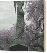 Ziba King Memorial Statue Side View Florida Usa Near Infrared Gr Wood Print