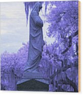 Ziba King Memorial Statue Side View Florida Usa Near Infrared Wood Print