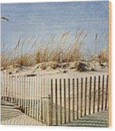 Zig Zag Beach Wood Print