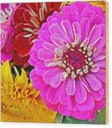 Zinnia Flower Wood Print