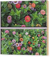 Zinnias 4 Panel Vertical Composite Wood Print