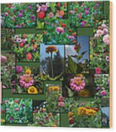 Zinnias Collage Rectangle Wood Print