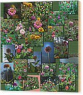 Zinnias Collage Square Wood Print